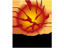 a-league-logo