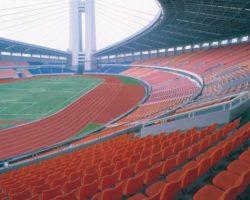 Спортивный центр Желтого Дракона